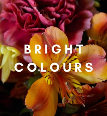 Bright Colours